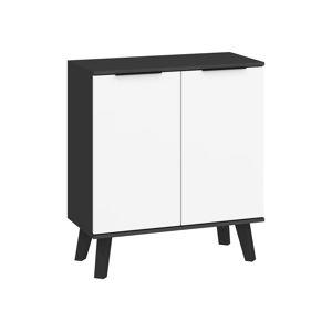 Sven 01 - Komoda 2D, černá/bílý lesk
